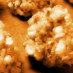 7 ways to make popcorn balls (1956)