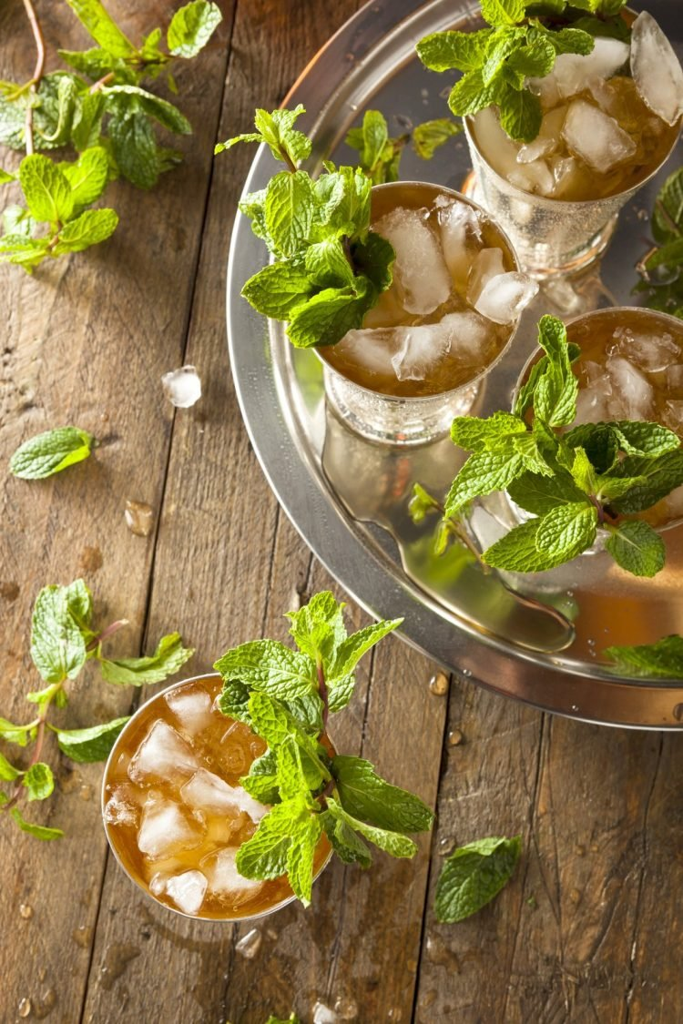 100 years of the best classic mint julep recipes (1862-1962)