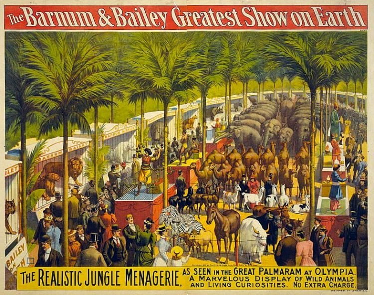 The Barnum & Bailey Greatest Show on Earth--The realistic jungle menagerie ...