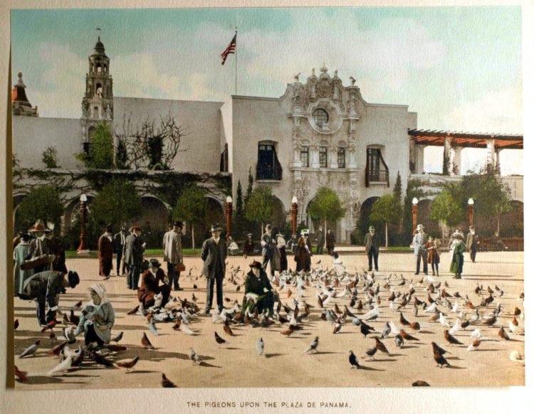 San Diego's World's Fair - 1916 Panama-California Exposition - Pigeons on the Plaza de Panama