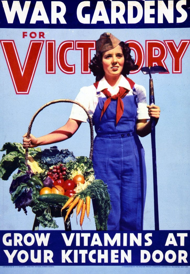 1940s WWII - War gardens for victory Grow vitamins at your kitchen door