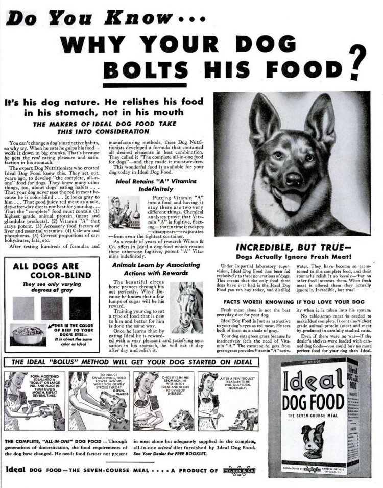 1943 Ideal dog food
