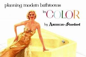 1950s bathroom decor and fixtures (2)