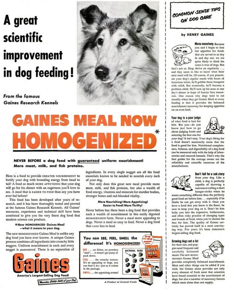 1952 Gaines dog food