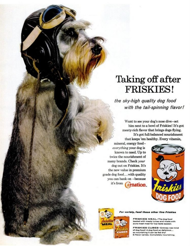 1960 ad for Friskies canned Dog food
