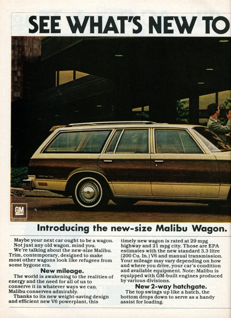 1978 Chevrolet Malibu station wagon