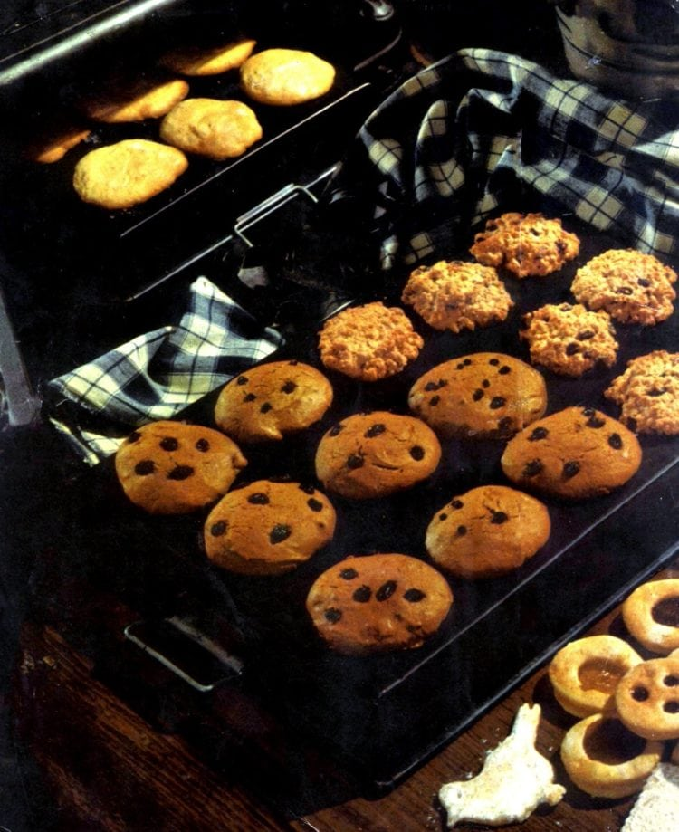 21 Delicious Old Fashioned Drop Cookie Recipes From The 50s