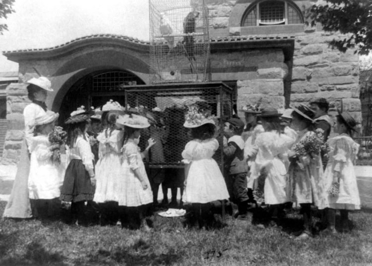 A class at the zoo - the bird cage 1899
