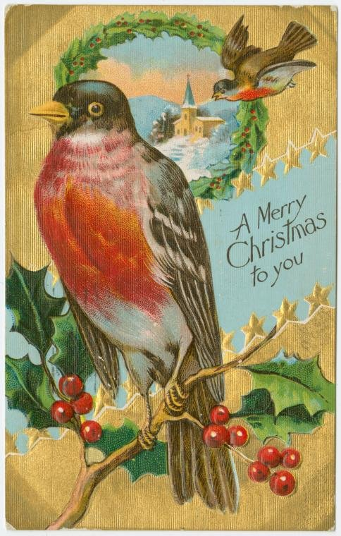 A merry Christmas to you antique holiday card with a robin bird on gold from 1908