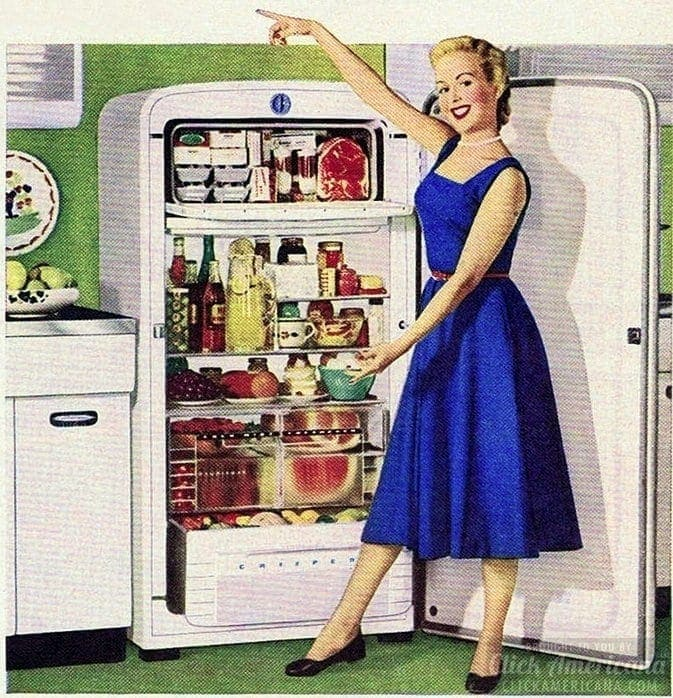 A proper fifties housewife must seriously adore the fridge!