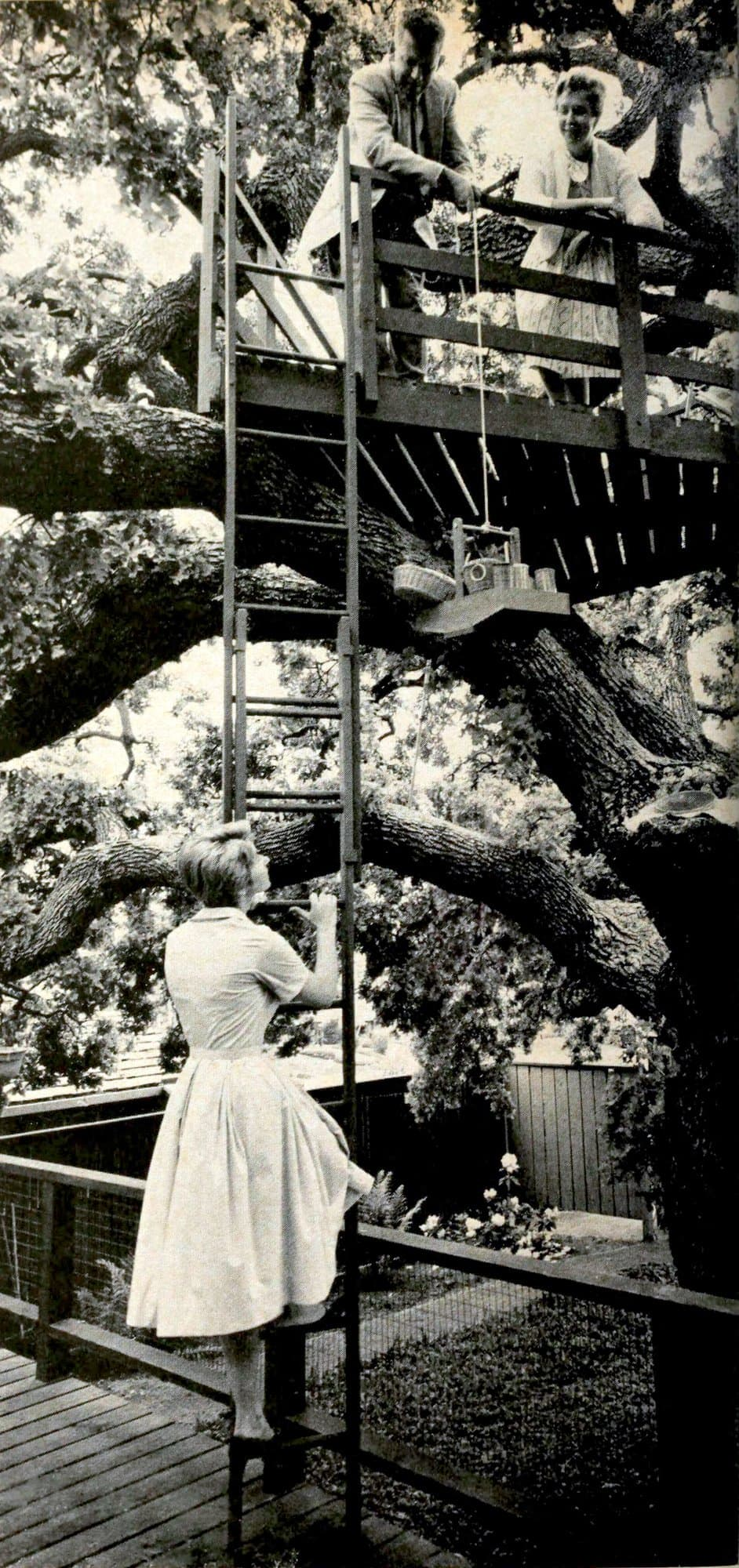 A vintage tree house for grown-ups (1961)