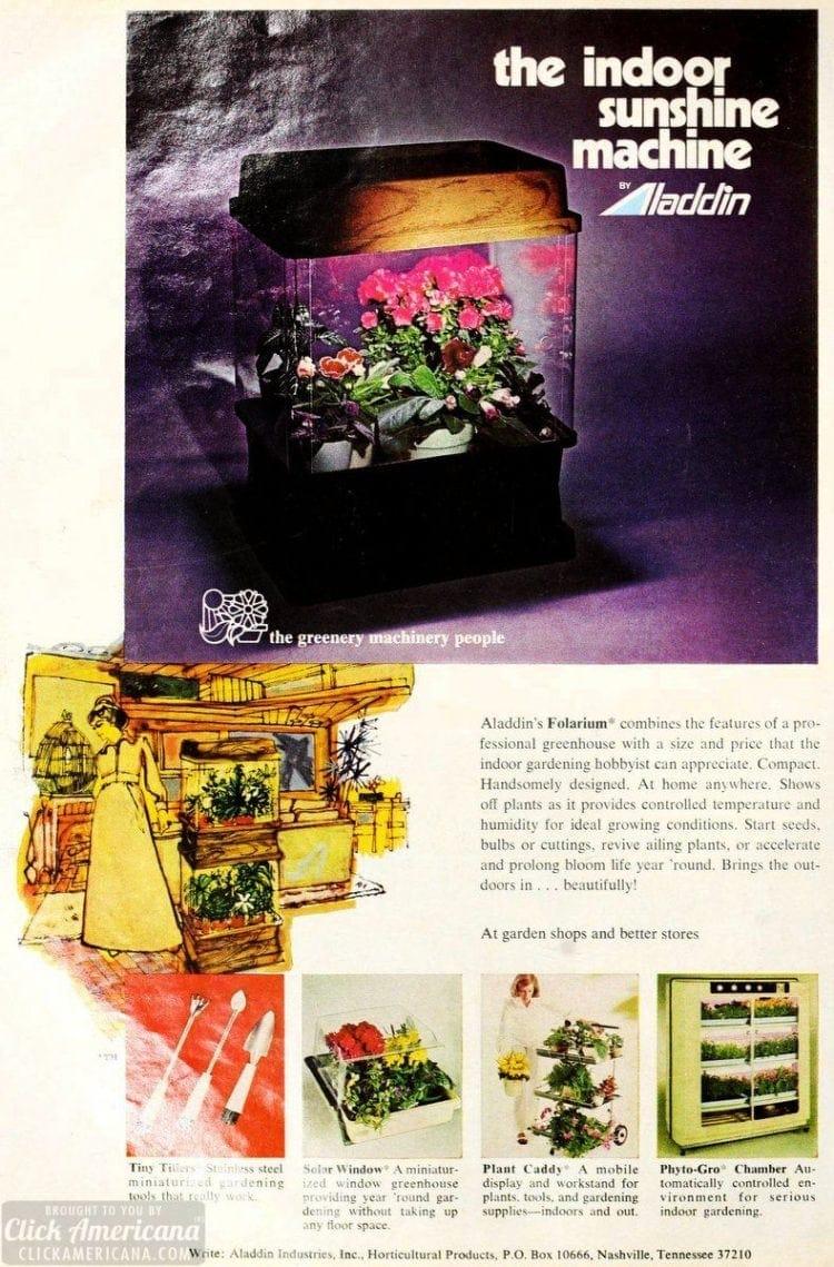 Aladdin Folarium greenhouse for plants