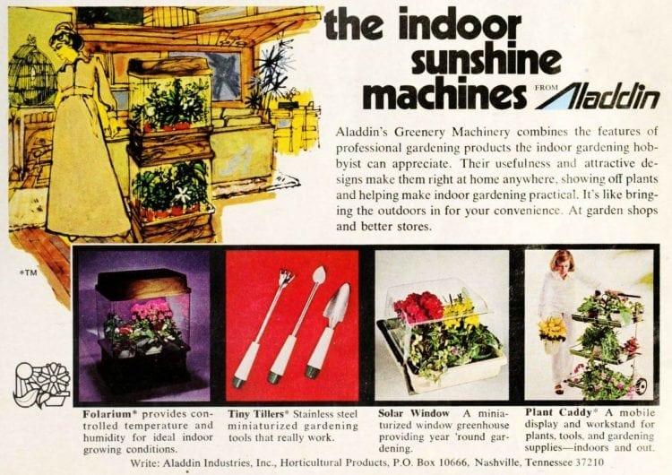 Aladdin indoor sunshine machines