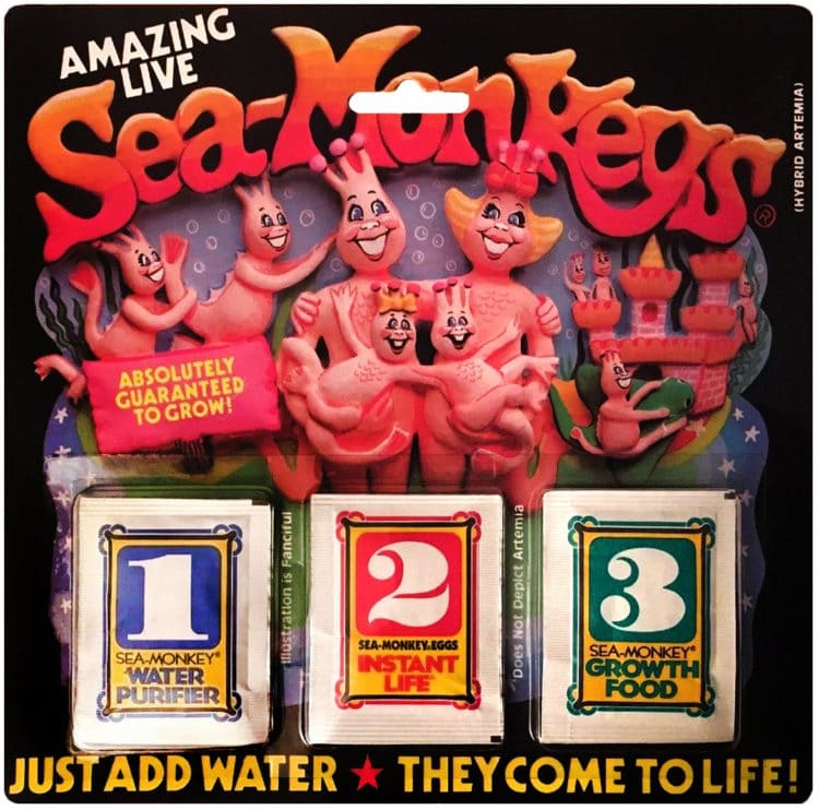 Amazing Live Sea Monkeys 3 packages