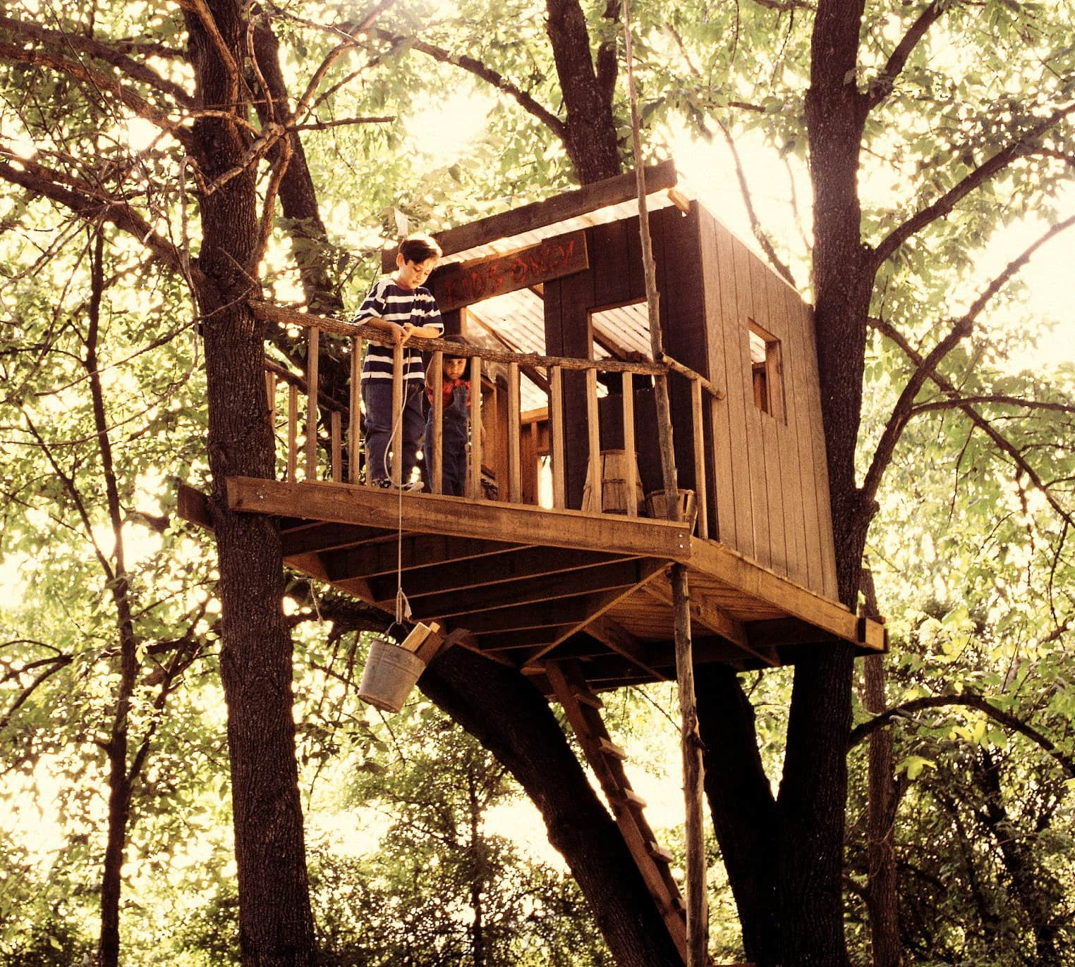 An old tree house up high