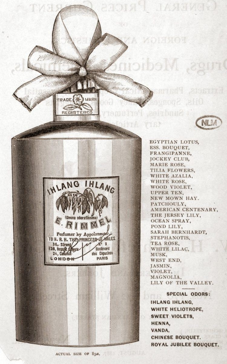 Antique E Rimmel perfume - Ihlang Ihlang
