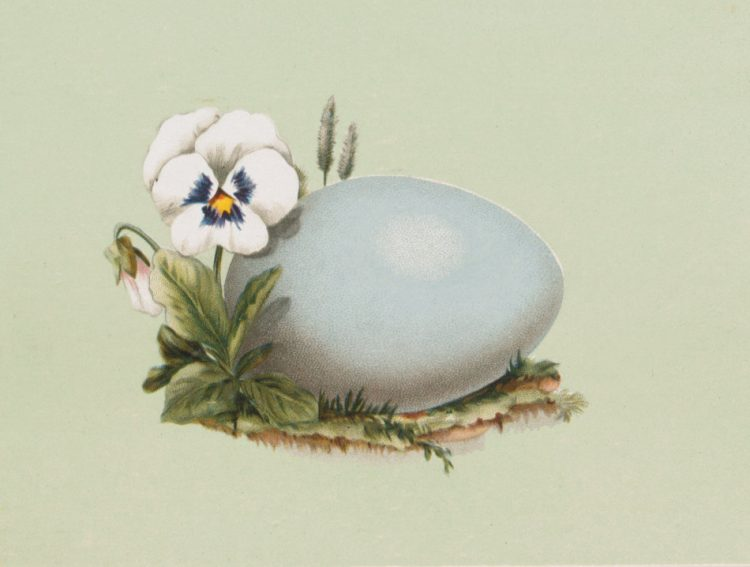 Antique Easter egg cards (2)