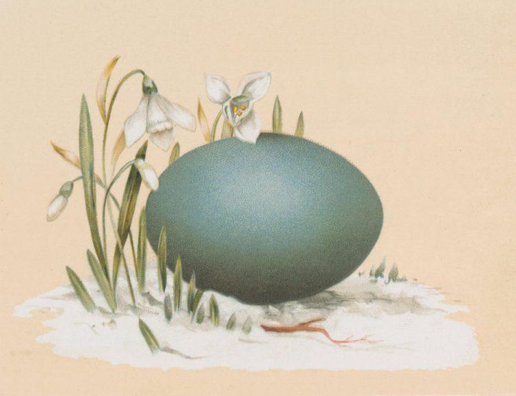 Antique Easter egg cards (3)