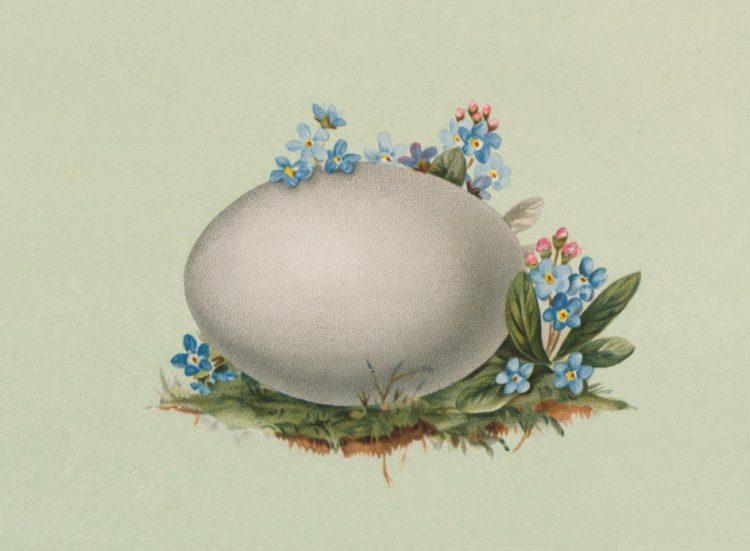 Antique Easter egg cards (4)