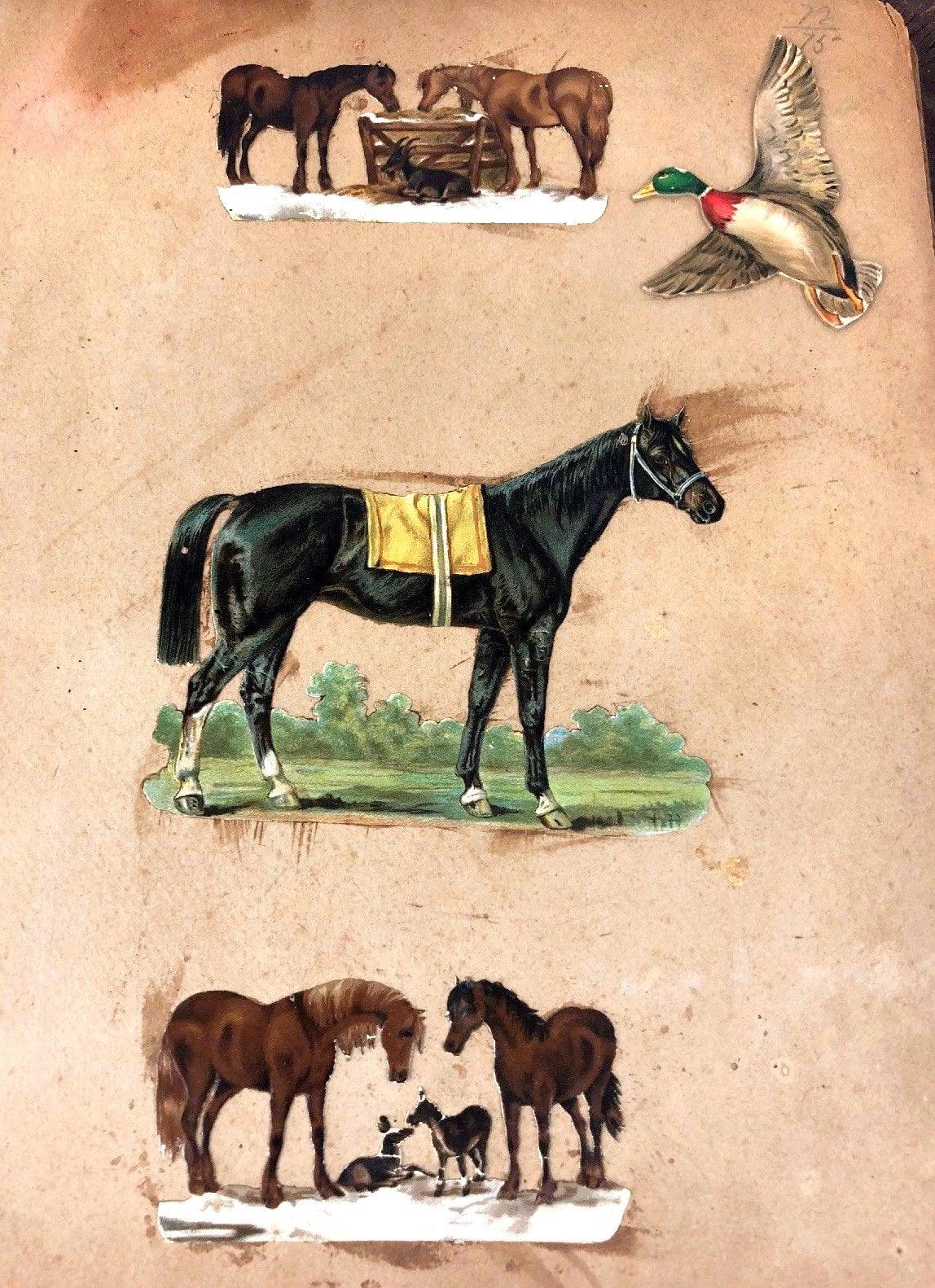 Antique Victorian scrapbook page (7)