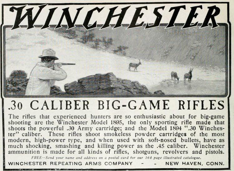 Antique Winchester 30 caliber big-game rifles