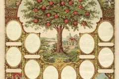 Antique family record - family tree chart for genealogy