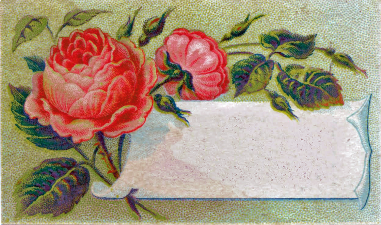 Antique flower calling card