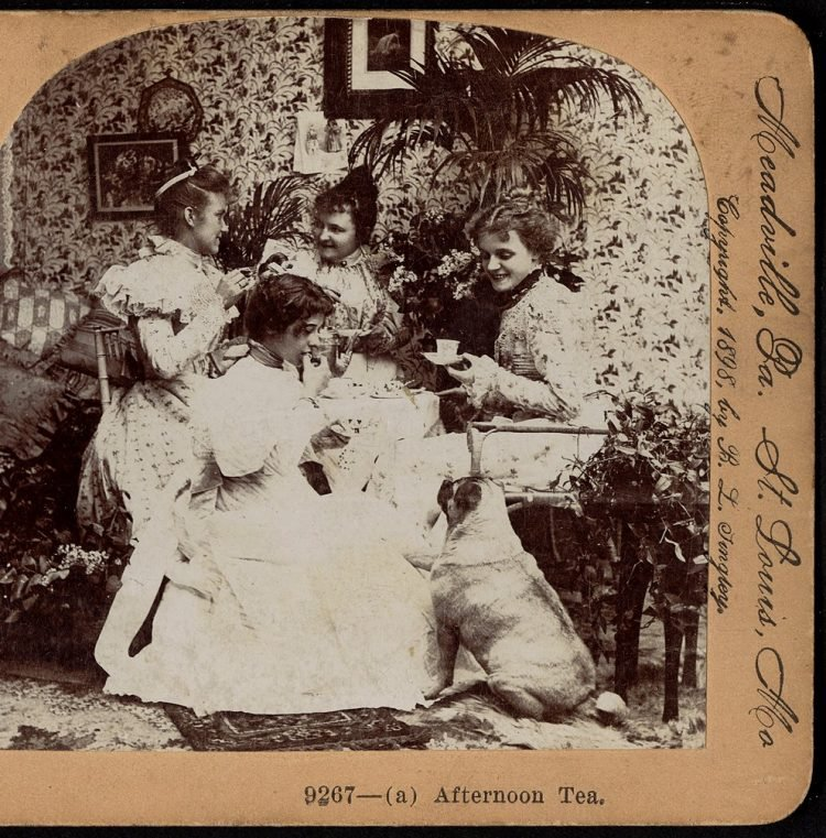 Antique photo of afternoon tea