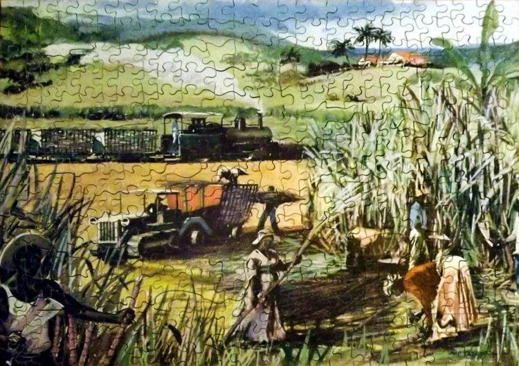 Antique puzzle - Harvesting sugar cane