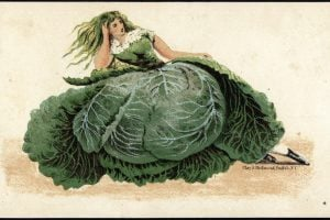 Art cards from the 1800s - Woman's head on a cabbage dress body