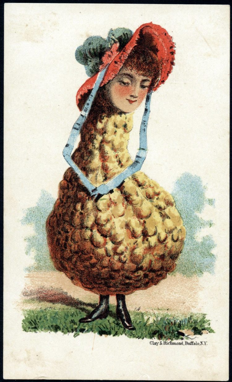 Art cards from the 1800s - Woman's head with a squash body