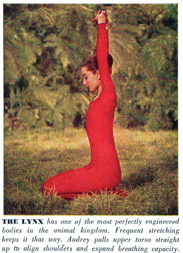 Audrey Hepubrn does yoga in 1959 - The Lynx pose