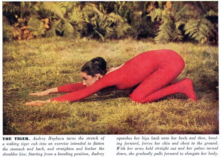 Audrey Hepubrn does yoga in 1959 - The Tiger