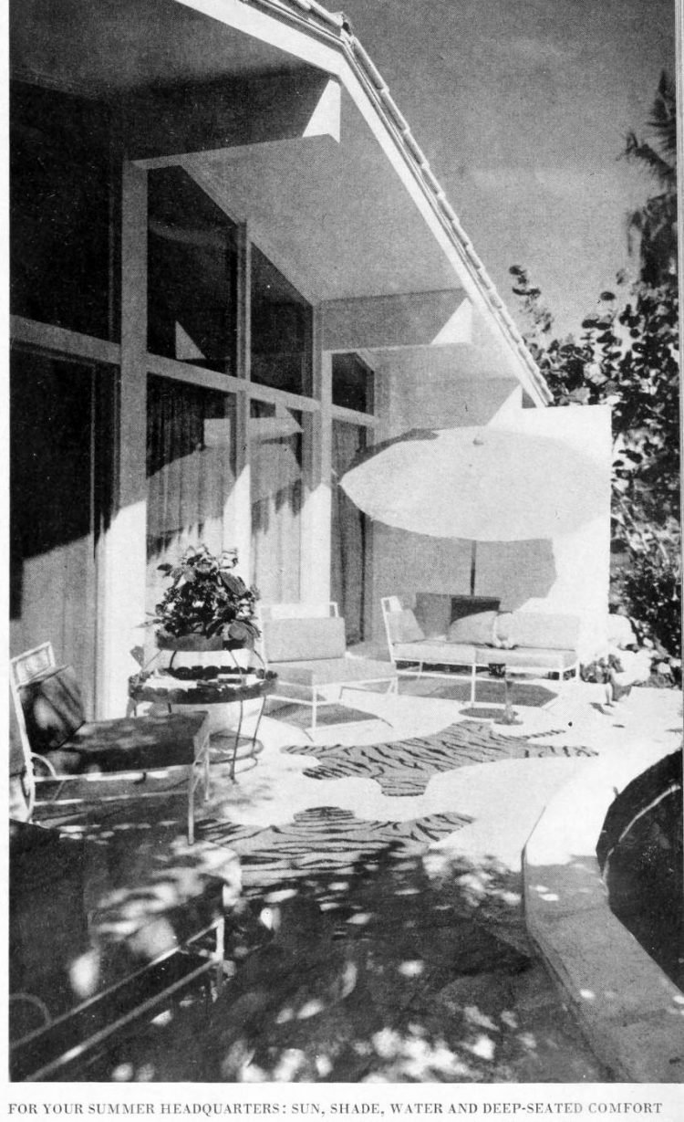 Back patio - Vintage sixties Scholz Mark 60 house