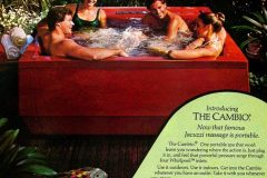 Backyard spa Cambio hot tub from Jacuzzi (1981)