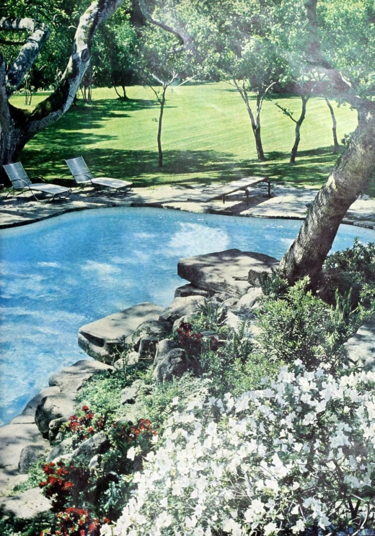 Beautiful classic swimming pool from 1961 (1)