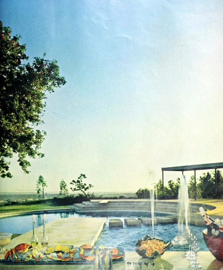 Beautiful classic swimming pool from 1961 (2)
