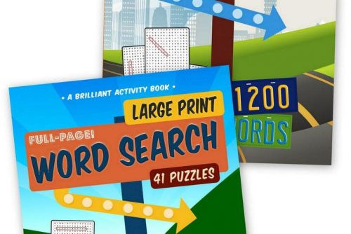 Big fun - Large print word search puzzles