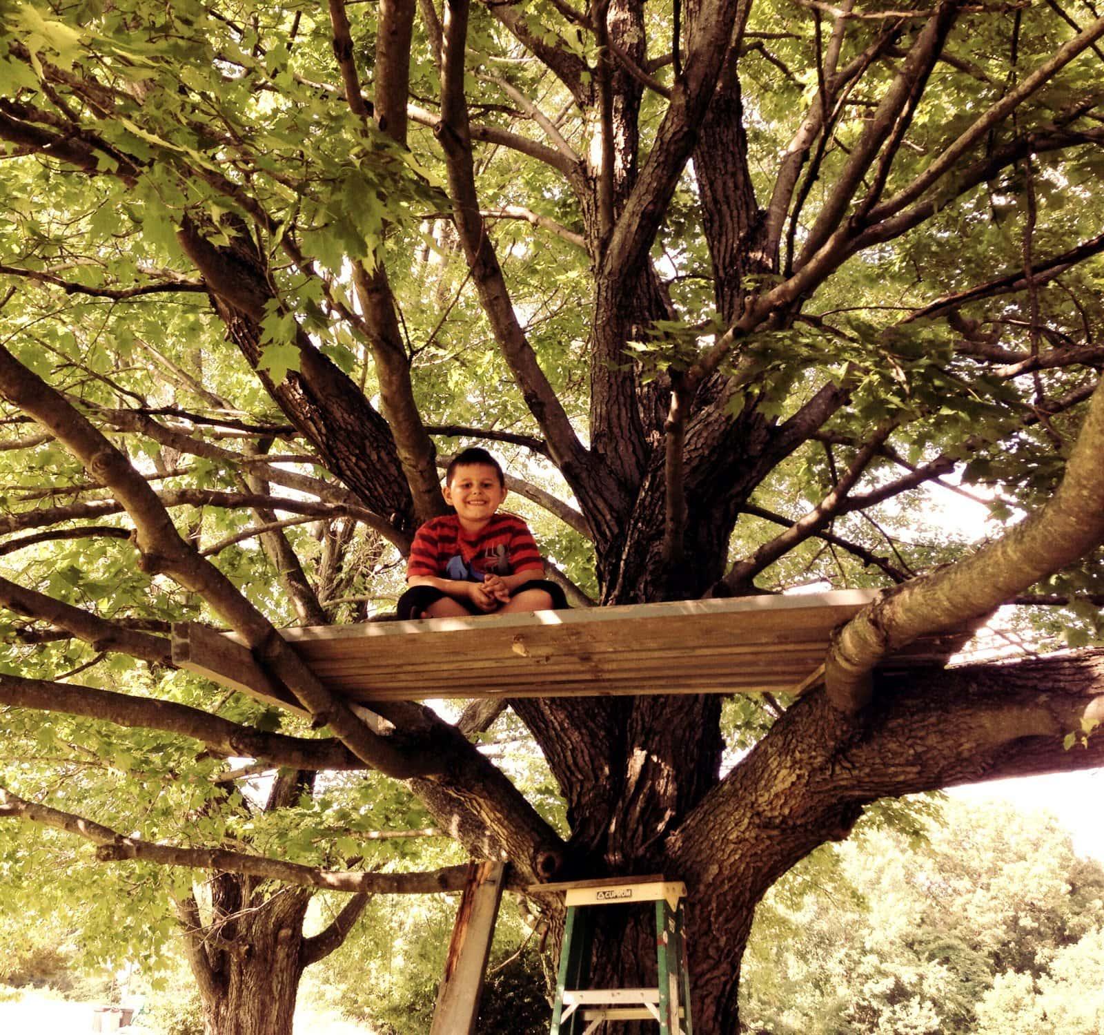 Boy sitting on a treehouse platform base