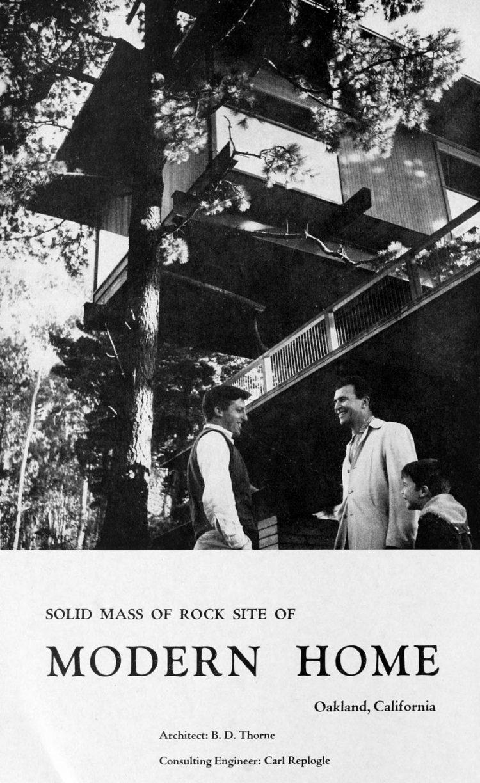 Brubeck's treehouse home