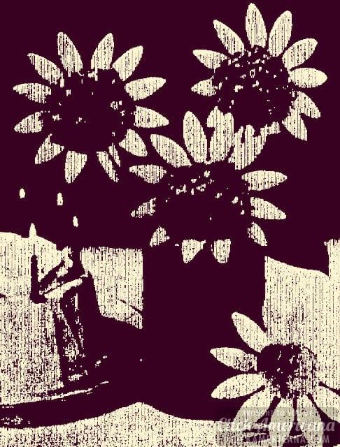 Caramel popcorn crazy-daisies 1968