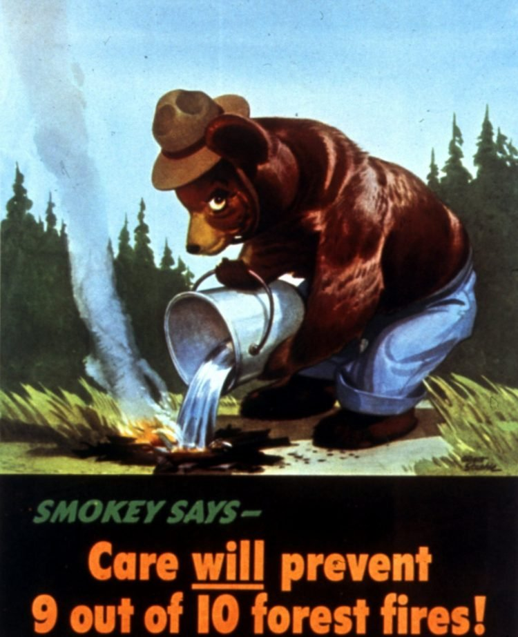 Care will prevent 9 out of 10 forest fires