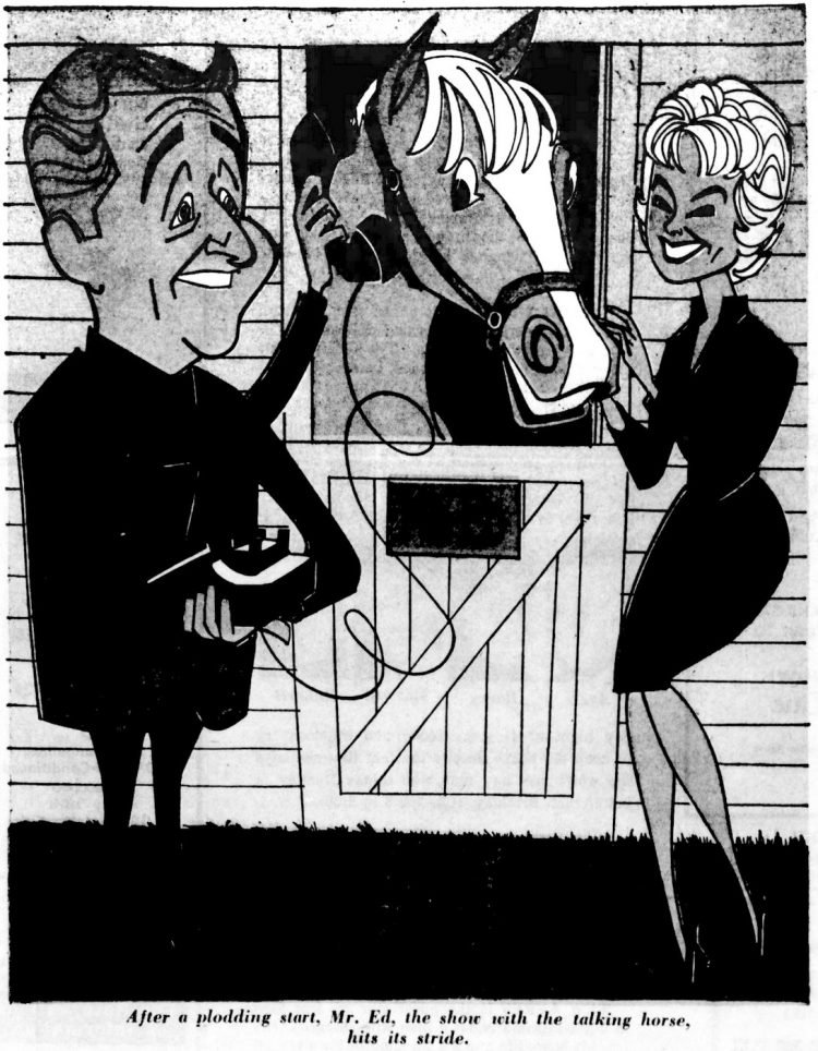 Cartoon from Mister Ed, the vintage TV show with the talking horse - 1962