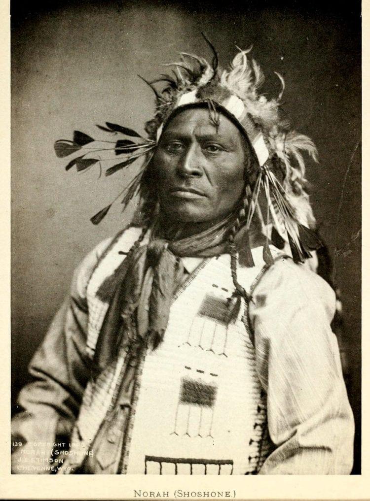Norah (Shoshone) - Native American