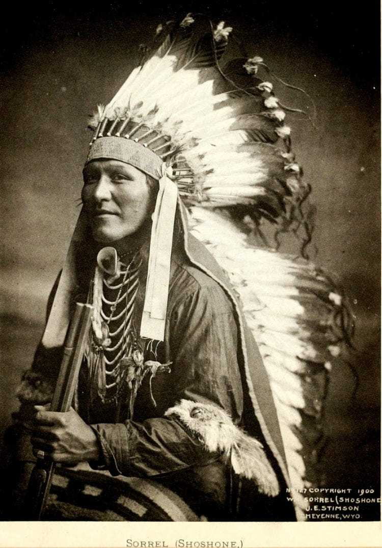 Sorrel - Shoshone - Native American