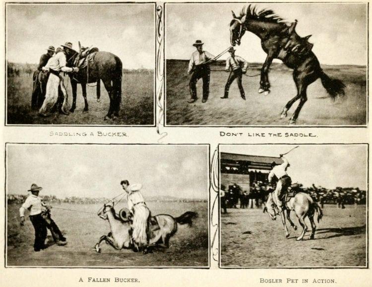 Cheyenne's Frontier Days: Wyoming's old Wild West festival
