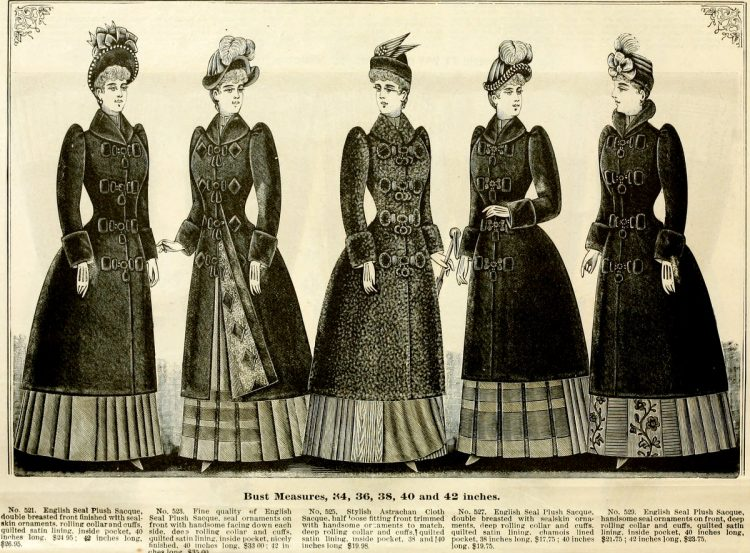 Clothing for women - fashion from fall winter 1890 (4)