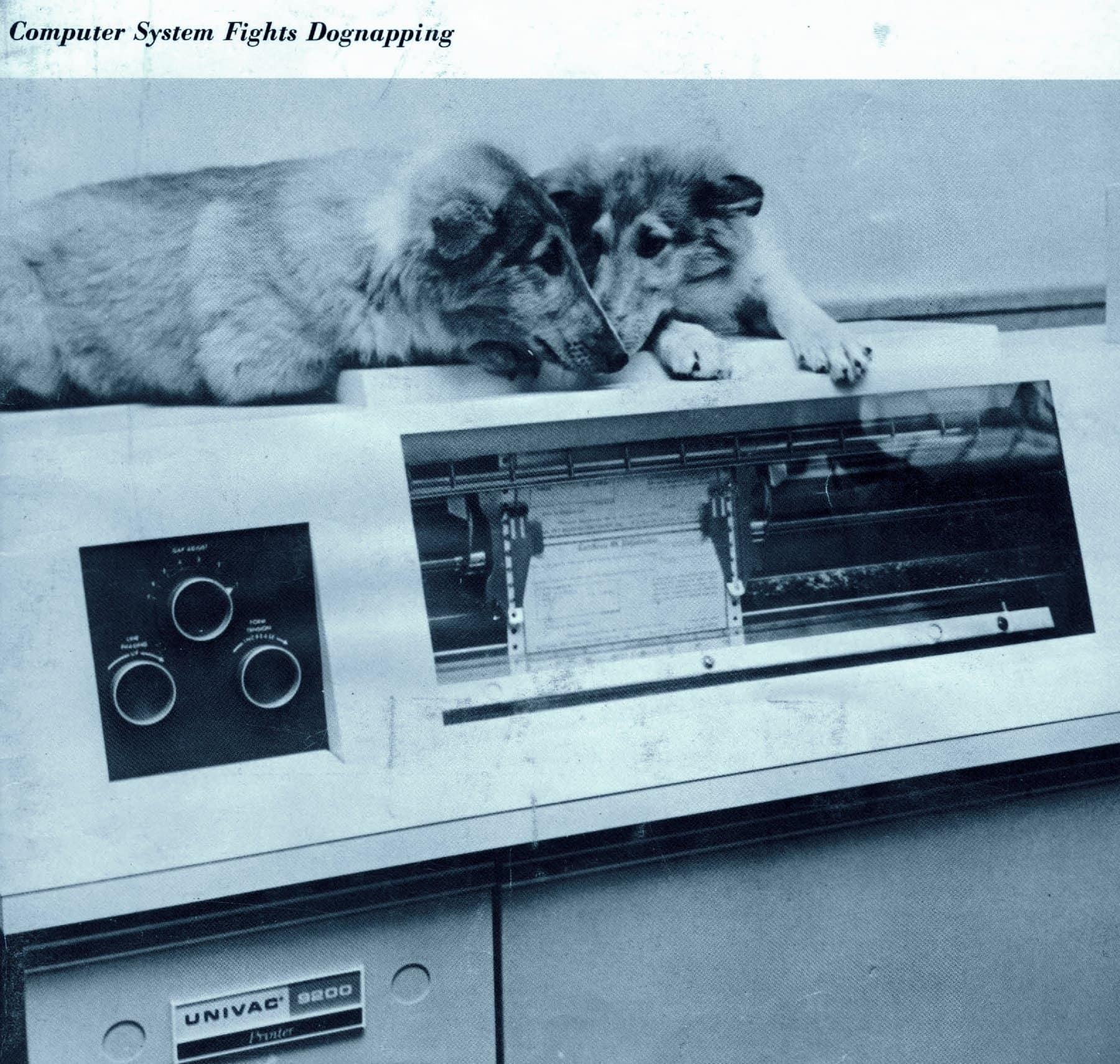 Computer system fights dognapping - 1969-1970