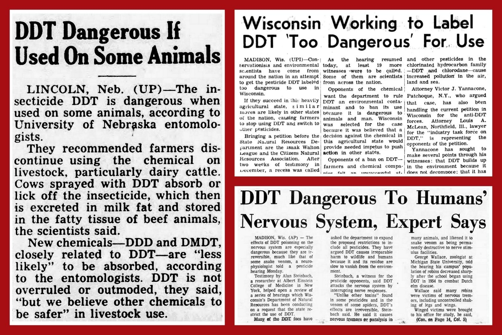 DDT dangerous - vintage newspaper stories