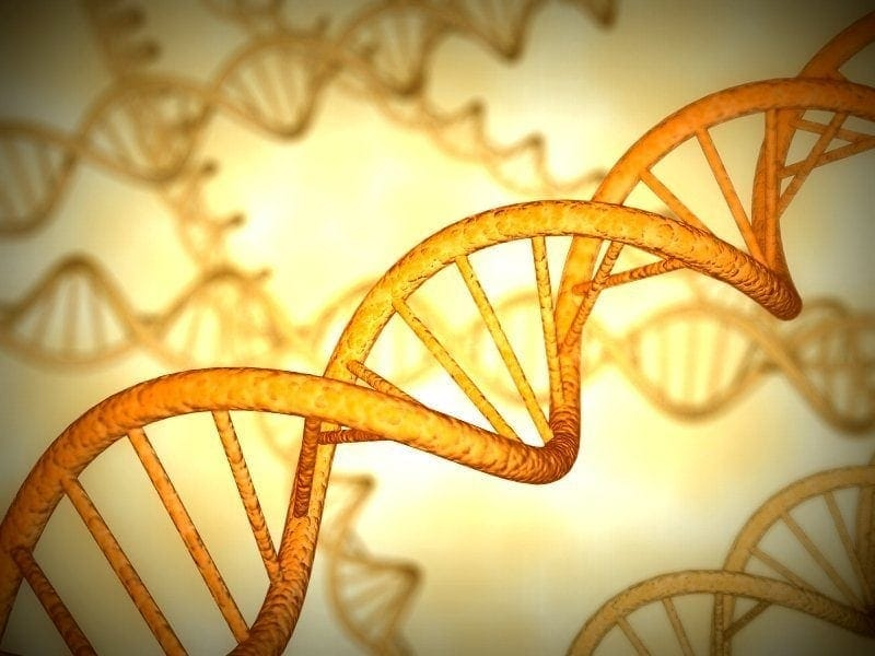 DNA: Gene chemical identified – may lead to source of life (1949)